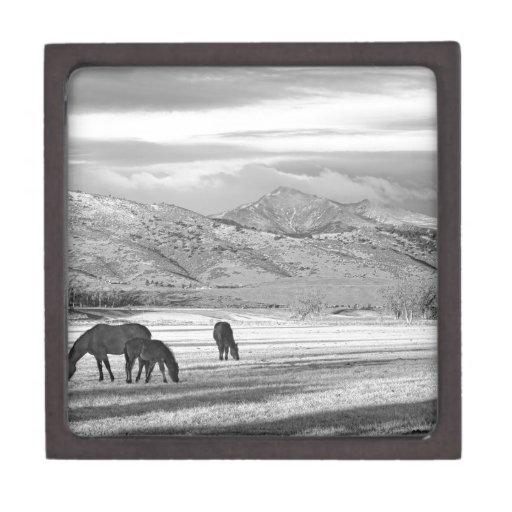 Rocky Mountain Colorado Country Morning BW Premium Keepsake Box