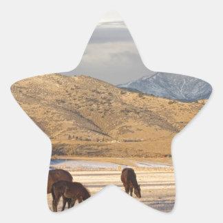 Rocky Mountain Colorado Country Morning Star Sticker