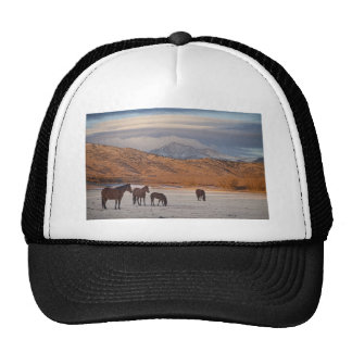 Rocky Mountain Country Morning Trucker Hat