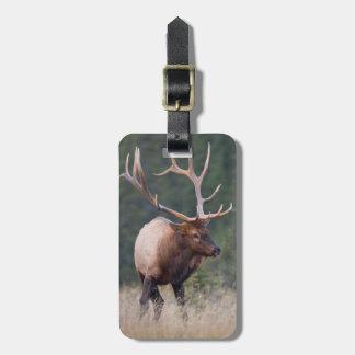 Rocky Mountain Elk Bag Tag