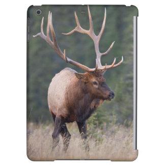 Rocky Mountain Elk iPad Air Cases