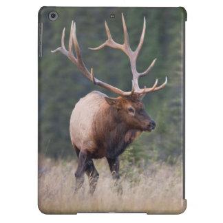 Rocky Mountain Elk iPad Air Covers