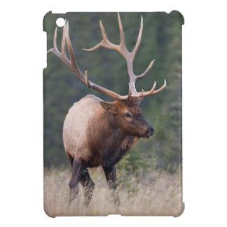 Rocky Mountain Elk iPad Mini Covers