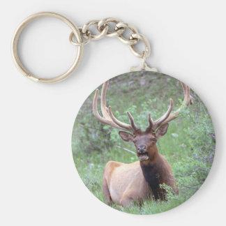 Rocky Mountain Elk Keychain