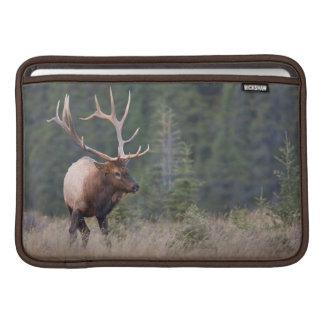 Rocky Mountain Elk MacBook Sleeve