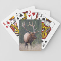 Rocky Mountain Elk Playing Cards