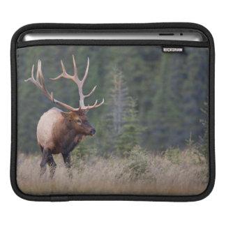 Rocky Mountain Elk Sleeve For iPads