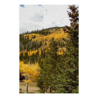 Rocky Mountain Fall Color Photo Nature Wall Poster
