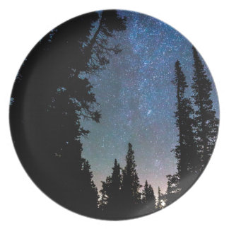 Rocky Mountain Forest Night Plate