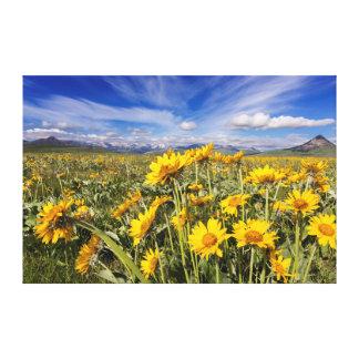 Rocky Mountain Front Range Canvas Print
