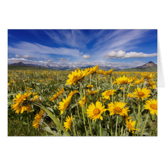 Rocky Mountain Front Range Greeting Cards