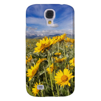 Rocky Mountain Front Range Samsung Galaxy S4 Cover