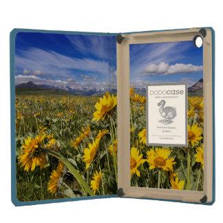 Rocky Mountain Front Range iPad Mini Case