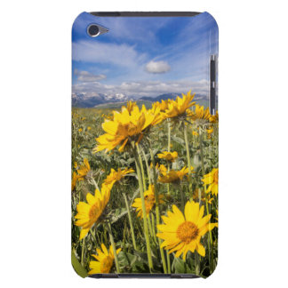 Rocky Mountain Front Range iPod Case-Mate Cases