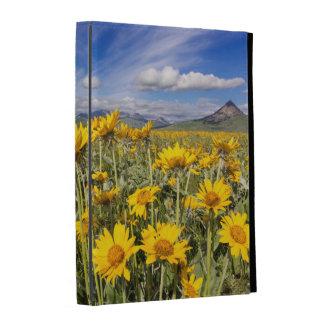 Rocky Mountain Front Range iPad Folio Cases