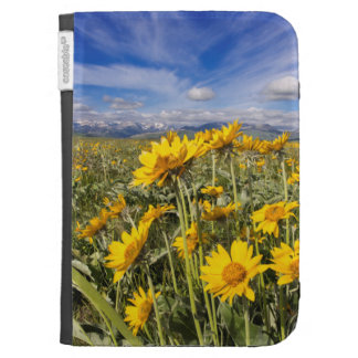 Rocky Mountain Front Range Kindle Cases