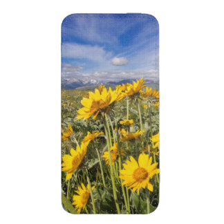 Rocky Mountain Front Range iPhone 5 Pouch
