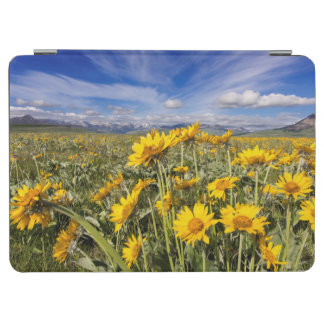 Rocky Mountain Front Range iPad Air Cover