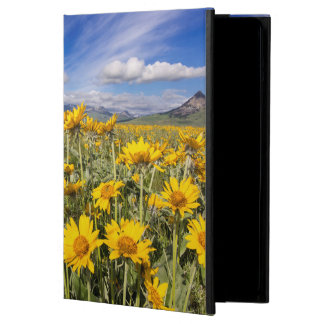 Rocky Mountain Front Range Cover For iPad Air