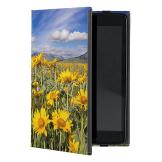 Rocky Mountain Front Range Covers For iPad Mini