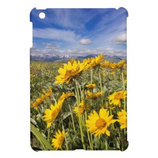 Rocky Mountain Front Range iPad Mini Covers