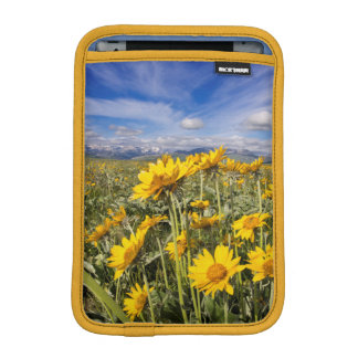 Rocky Mountain Front Range iPad Mini Sleeves