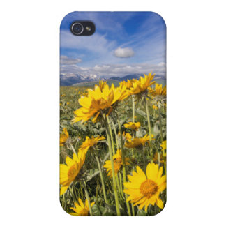 Rocky Mountain Front Range iPhone 4/4S Case