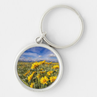 Rocky Mountain Front Range Keychain