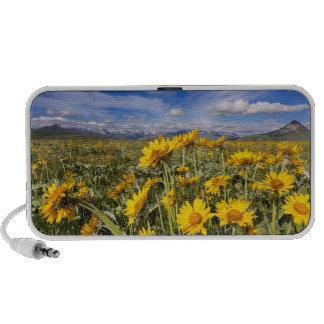 Rocky Mountain Front Range Notebook Speaker