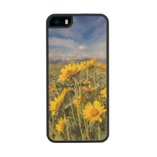 Rocky Mountain Front Range Carved® Maple iPhone 5 Case