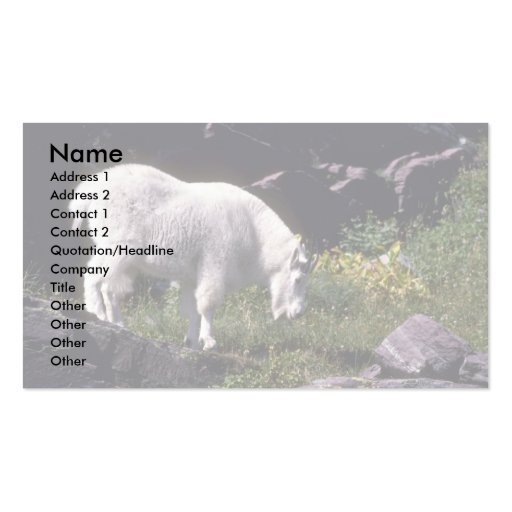 Rocky mountain goat business cards