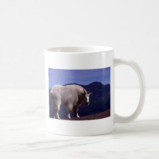 Rocky Mountain Goat-large alert billy Mug
