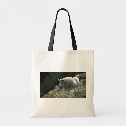Rocky mountain goat (Large male) Canvas Bag
