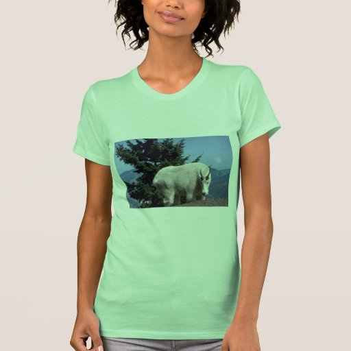 Rocky mountain goat (Large male wary on skyline) T Shirt