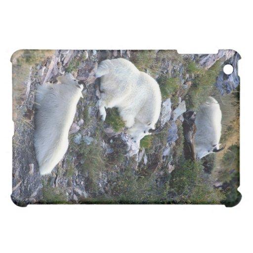 Rocky Mountain goats iPad Mini Case