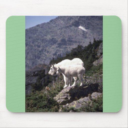 Rocky mountain goats (Nanny and kid) Mousepads