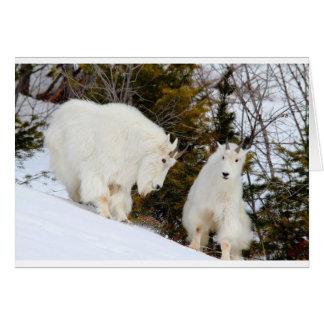 Rocky Mountain Goats Stationery Note Card