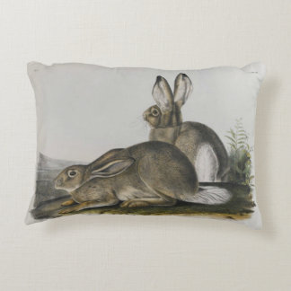 """Rocky Mountain Hare"" by John James Audubon Accent Pillow"