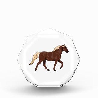 Rocky Mountain Horse Chocolate Acrylic Award