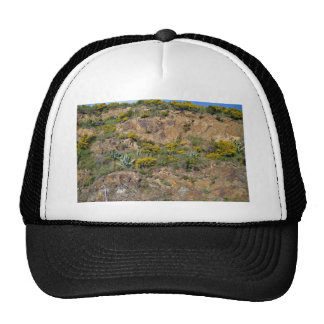 Rocky mountain landscape with bushes hat