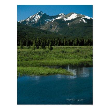 Rocky Mountain National Park , Colorado Post Cards