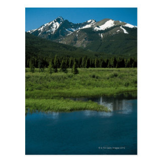 Rocky Mountain National Park , Colorado Postcard