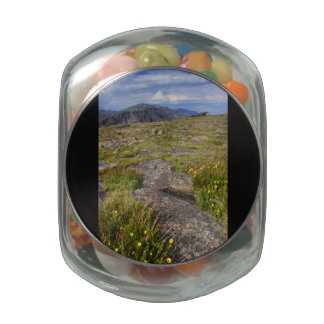 Rocky Mountain National Park Glass Candy Jars