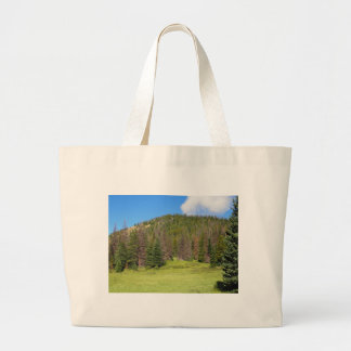 Rocky Mountain National Park Large Tote Bag