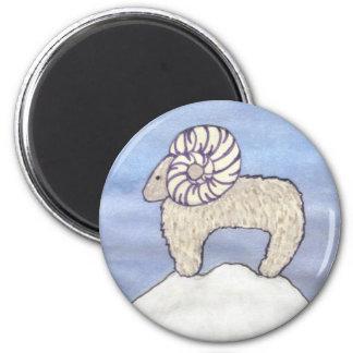 Rocky Mountain Ram Fridge Magnets
