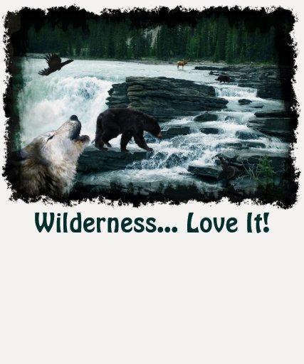 Rocky Mountain Scene with Wildlife T-Shirt