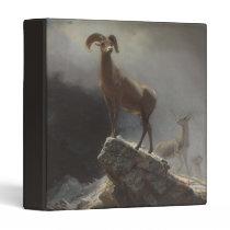 Rocky Mountain Sheep or Big Horn, Ovis, Montana, c 3 Ring Binder