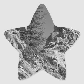 Rocky Mountain St Vrian Pinnacle Star Sticker