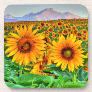 Rocky Mountain Sunflowers Beverage Coaster