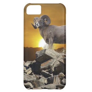 Rocky Mountain Wild Big Horn Sheep & Sunset Case For iPhone 5C